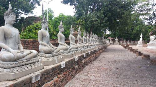 タイに行ってきた⑬ 最終日はアユタヤへ!!象乗り体験と歴史に触れる - いつまでネガティブで悩んでいるの?
