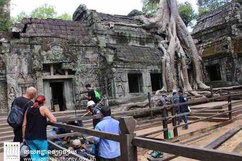 #アンコールワット日本語ガイドトム(327)#タ•プローム寺院のガジュマルの木