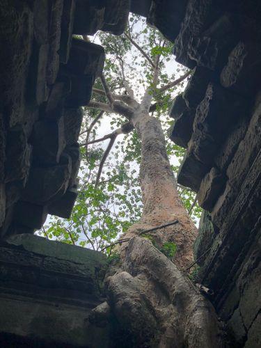 アンコールワット 遺跡群 カンボジア日本語ガイド付け