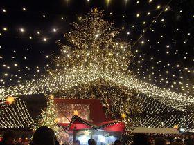 ドイツ世界遺産の町「ケルン」で楽しむクリスマスマーケット|ドイツ|LINEトラベルjp 旅行ガイド