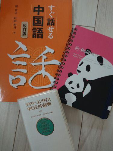 世界遺産 中国の歴史 と 中国語 - ルビーの人生日記