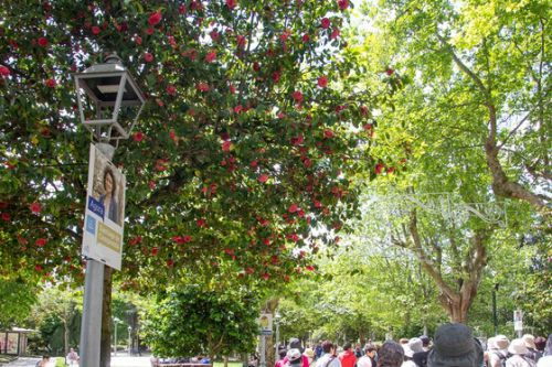 スペイン北部&ポルトガル紀行 その10 アラメダ公園からの世界遺産・サンティアゴ・デ・コンポステーラのカテドラル全景