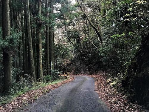 国内唯一の世界遺産登録たたら遺跡、大板山たたら遺跡を見学 - 青い滑走路