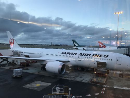 JALエコノミー最後尾座席でシドニーから成田空港へ!シドニー旅行ブログその10(世界遺産旅行記)