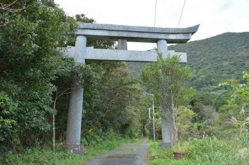 アコウの大木に出会える住吉神社【屋久島観光スポット】