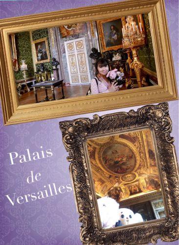 ヴェルサイユ宮殿  グリーンの豪華な部屋&天井画 ハネムーン旅行記2014♪ フランス&イタリア♪ - インド舞踊!絵画モデルで活躍中のねことぬいぐるみの人形劇ブログ♪ ねこのピンクハッピーライフ