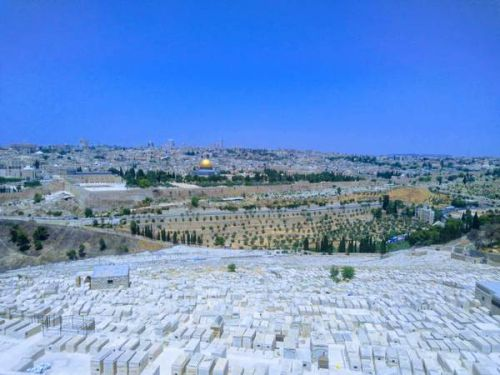 エルサレム観光「オリーブ山」の行き方と世界遺産の眺望できる絶景を紹介! - 【海外旅行】一人旅(バックパッカー)向けの世界の歩き方