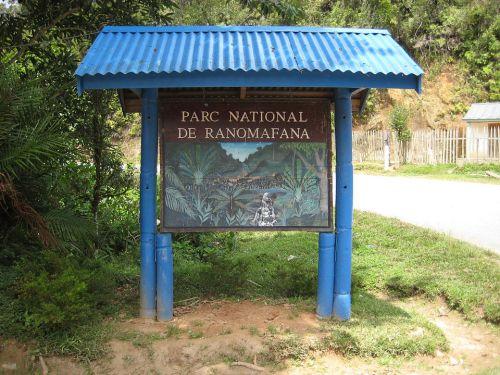マダガスカルの世界遺産「アツィナナナの熱帯雨林」の観光の見どころ - 気ままな雑多日記