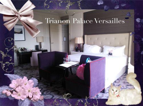 シャトーホテル  トリアノンパレス ヴェルサイユ♪ 素敵なルーム♪シーズン2笑 ハネムーン旅行記2014 フランス&イタリア♪ - インド舞踊!絵画モデルで活躍中のねことぬいぐるみの人形劇ブログ♪ ねこのピンクハッピーライフ