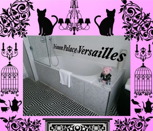 シャトーホテル  トリアノンパレス ヴェルサイユ♪ 素敵なルーム♪シーズン3笑 ハネムーン旅行記2014 フランス&イタリア♪ - インド舞踊!絵画モデルで活躍中のねことぬいぐるみの人形劇ブログ♪ ねこのピンクハッピーライフ