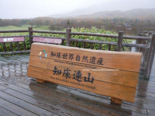 大雨の中の知床五湖観光!雨ニモ風ニモマケズ高架木道を歩きます!北海道旅行ブログその3(世界遺産旅行記)