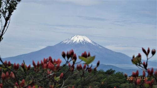 丹沢塔ノ岳~雪解けの富士山が美しい - 北穂高岳で味わう至福のひと時