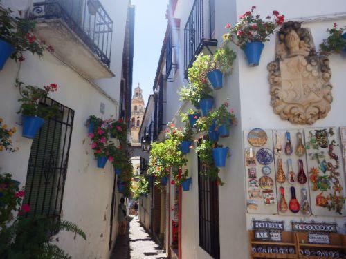 【レコンキスタの前と後の建築物が共存するスペインの世界遺産】コルドバ歴史地区 (Historic Centre of Cordoba)